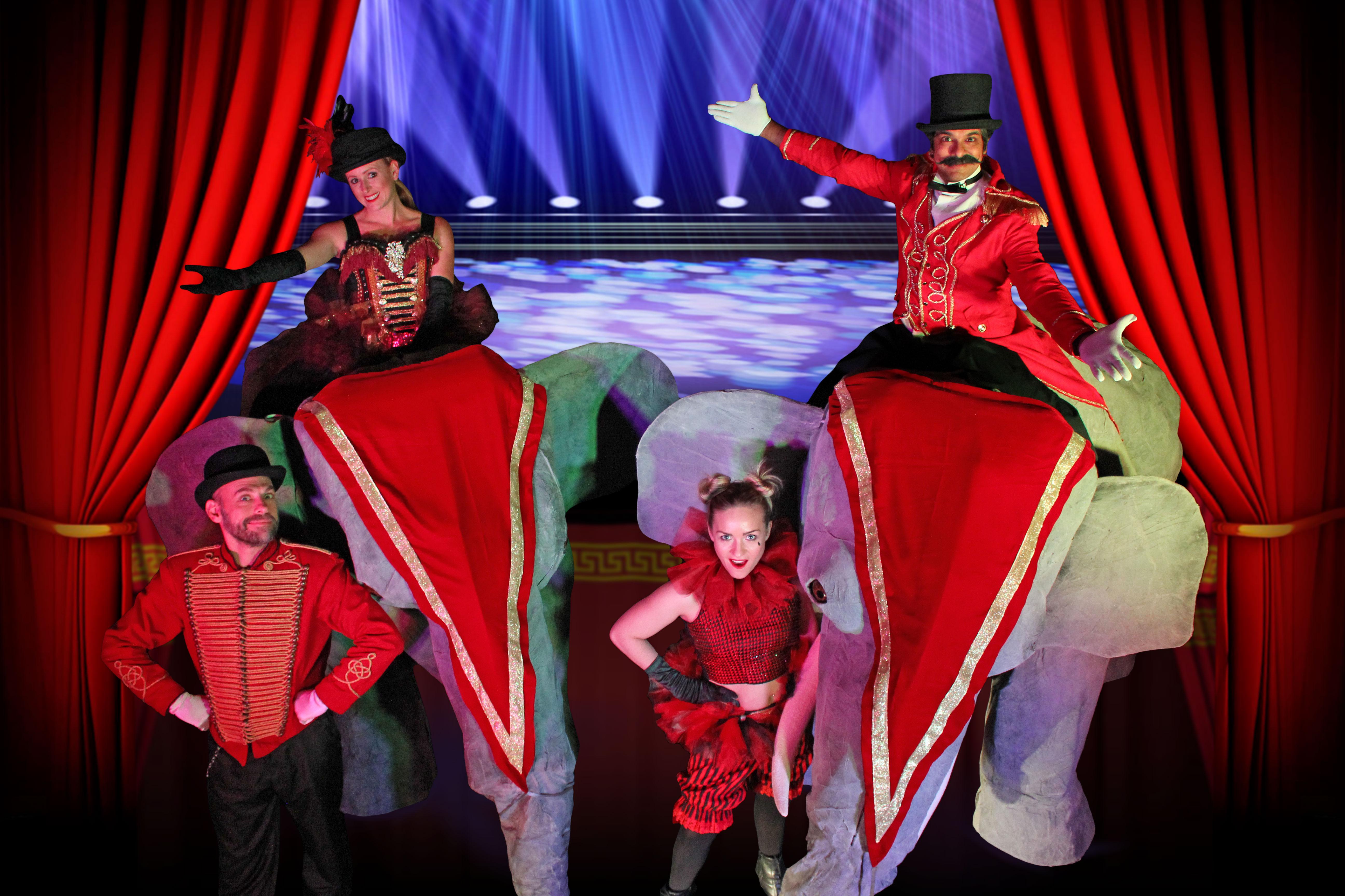 Circus theme elephants IMG_5049_Web-Size
