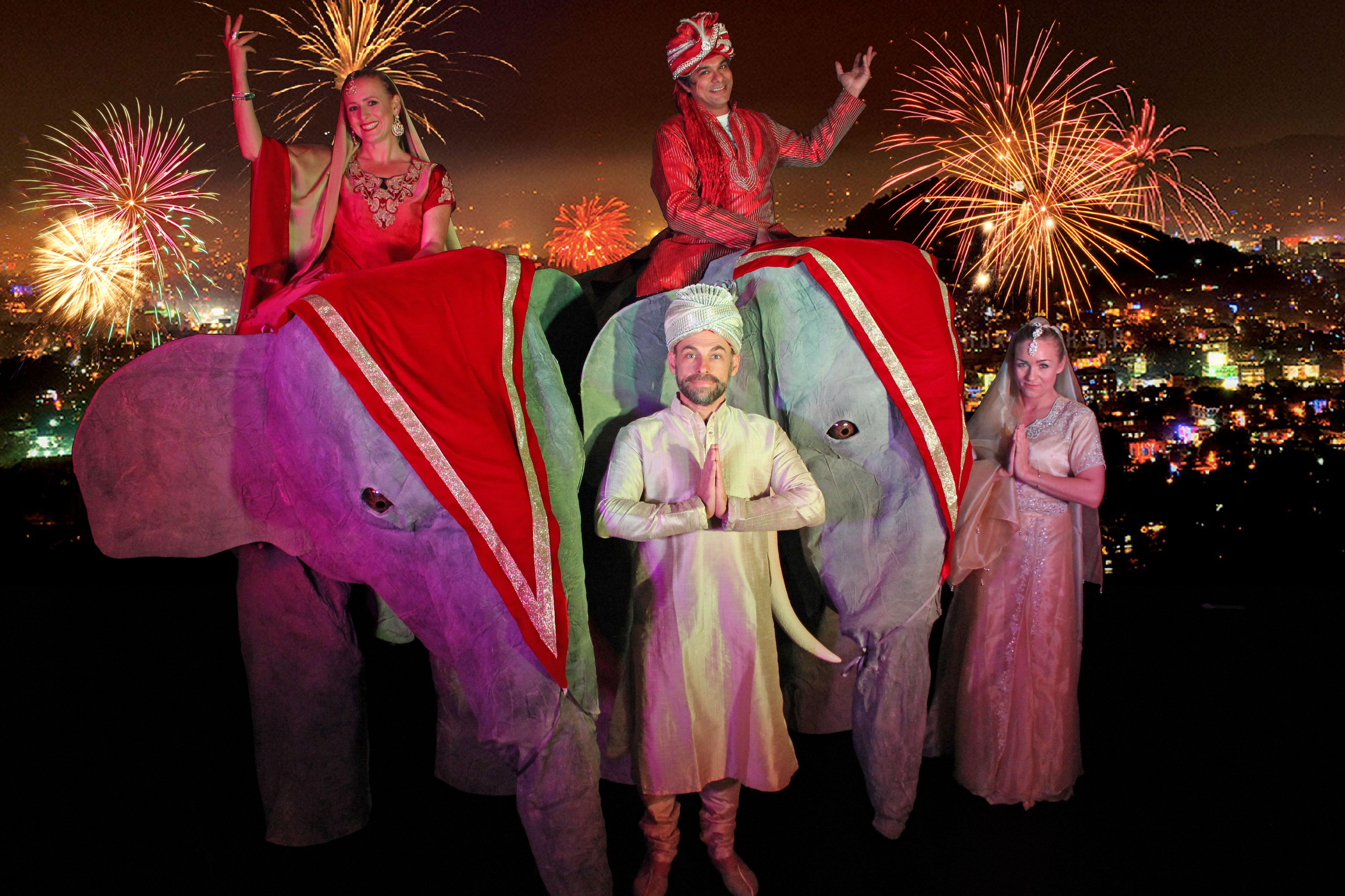 Indian elephants fireworks ING_4855_Web-Size