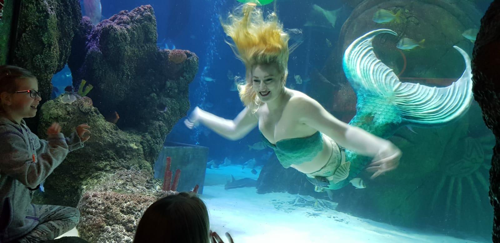 mermaid hire events